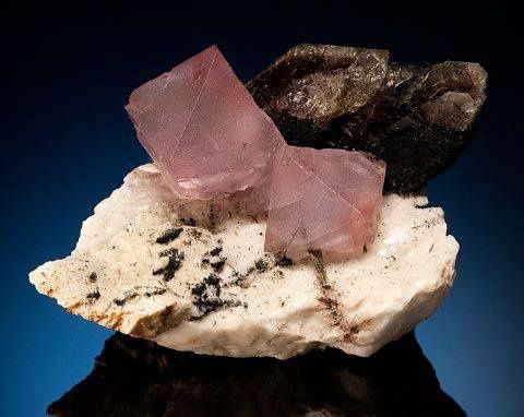 Fluorine Octaédre rose avec Quartz Fumé de Strzegom, Pologne (Photo by Mark Mauthner)