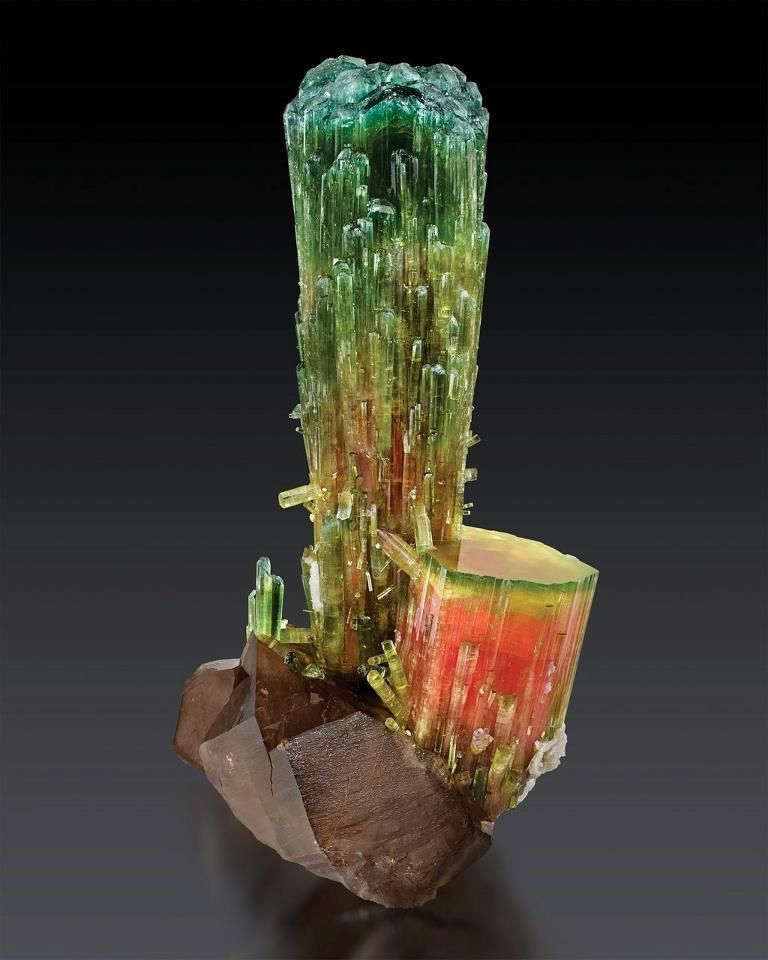 "Tourmaline ""melon d'eau"" ou ""watermelon"" or ""Elbaïte"" du Brésil (specimen: Fine Mineral International, photography: James Elliott)"