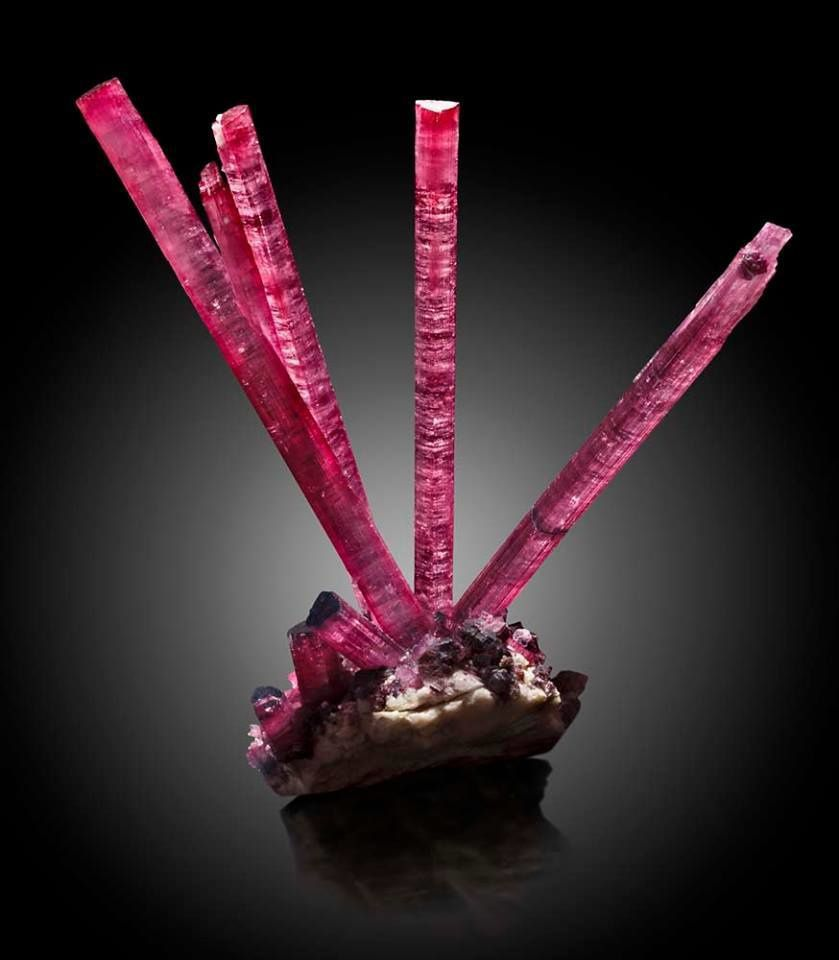 "Tourmaline ""Rubelite"" from Pederneira, Brazil (specimen: Fine Mineral International, photography: James Elliott)"