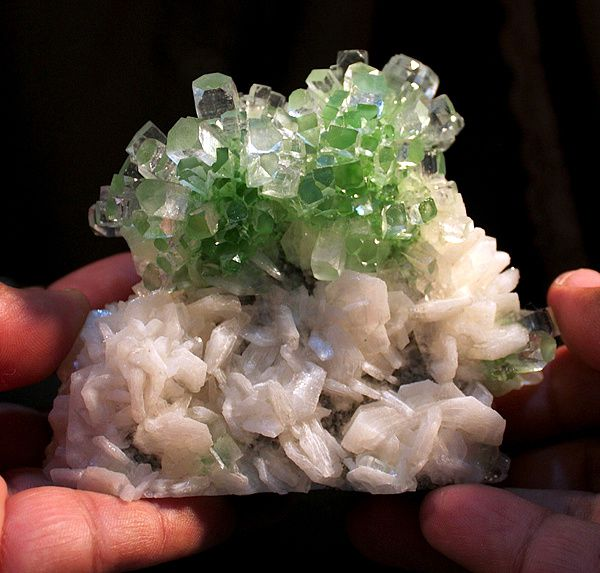 "Apophyllite verte ""Well Pocket"", Inde (collection privèe)"