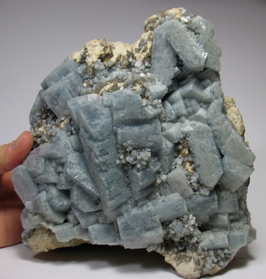 "Célestine de Holloway Quarry, Newport, Michigan, USA (pièce de ""Jewels fine minerals"")"