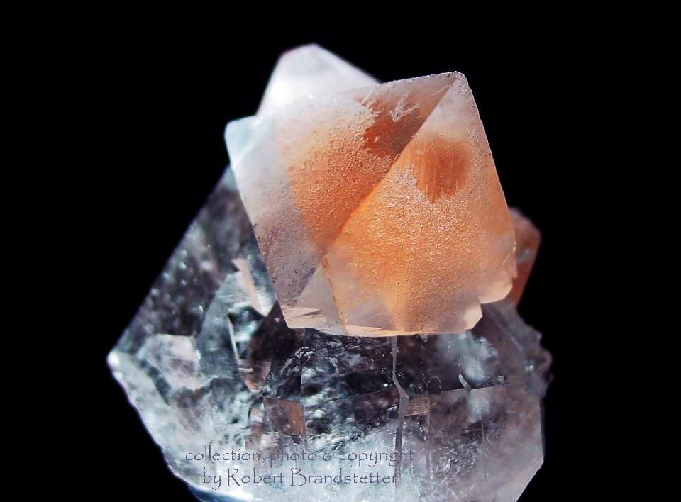Fluorite from Planggenstock, Göschener Alp, Uri, Switzerland (specimen and photo by Robert Brandstetter)