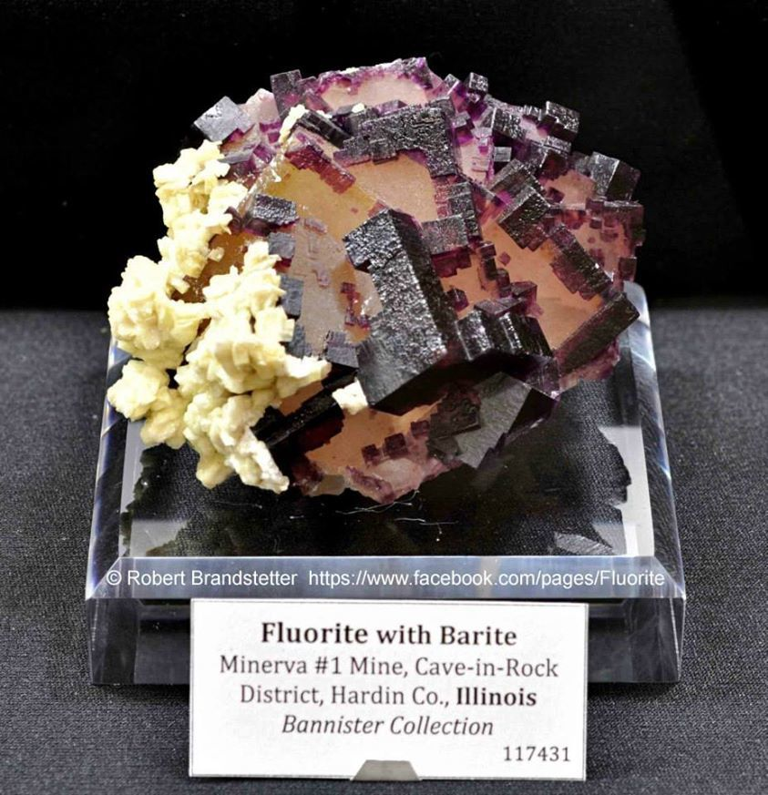 Fluorite from Minerva mine, Cave-in-Rock district, Hardin County, Illionois, USA (specimen and photo by Robert Brandstetter)
