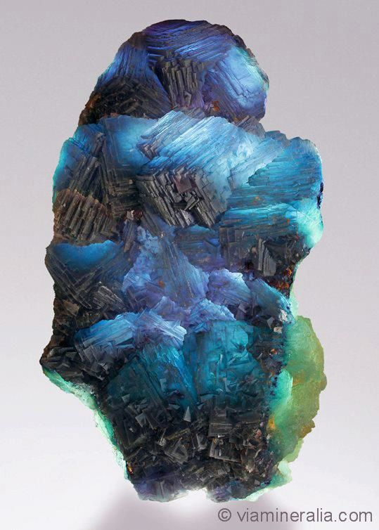 "Fluorite from Weisseck Mt., Lungau, Salzburg, Austria (specimen and photo by Martin Gruell ""Viamineralia"")"