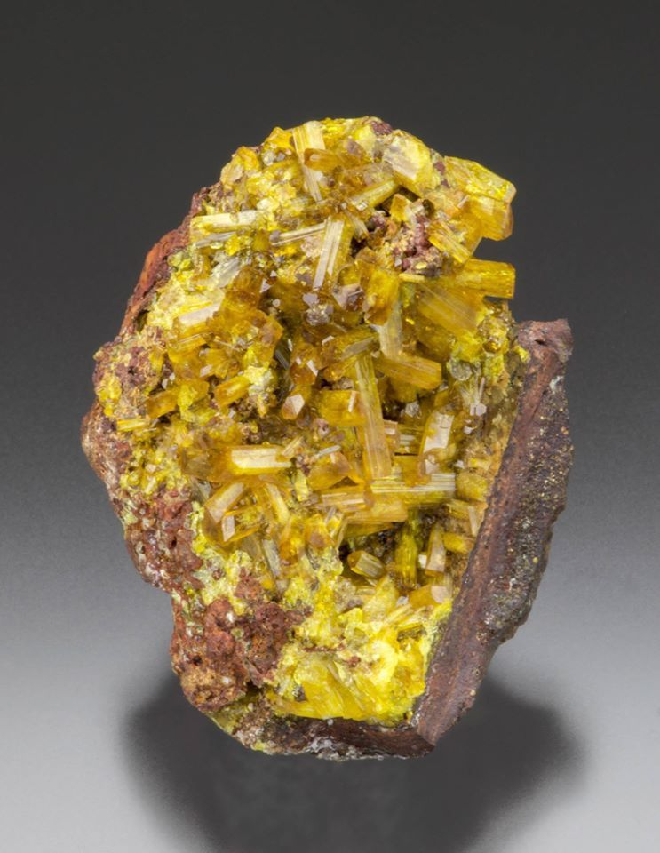 Legrandite Crystals, Ojuela Mine, Mexico (Specimen and Photo by Barnett Minerals)