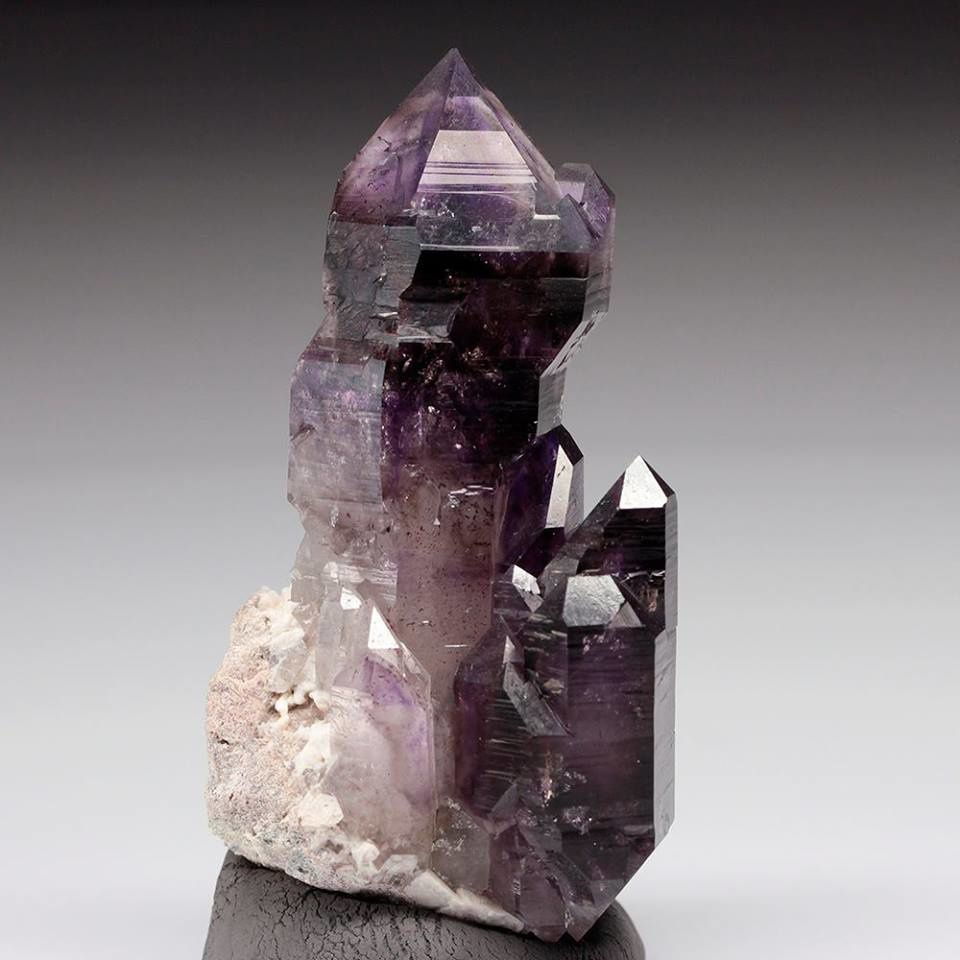 "Amethyst Scepter (Specimen and photo by ""Stonetrust"")"