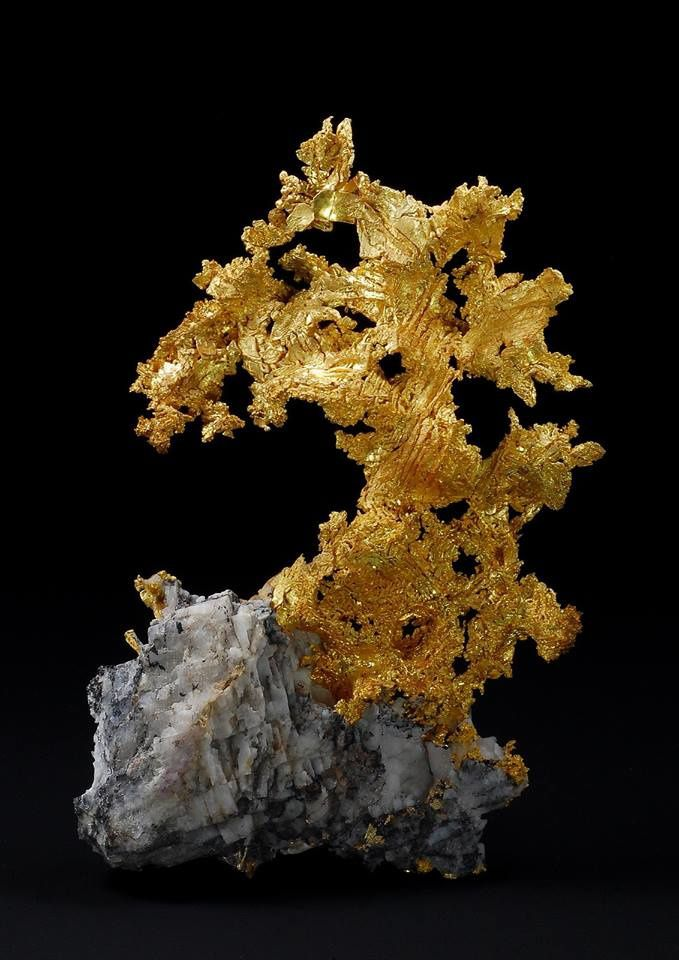 Native Gold (Anton Watzl Minerals)
