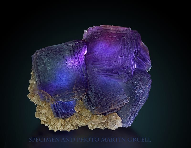 Fluorite (Specimen and photo by Martin Gruell)