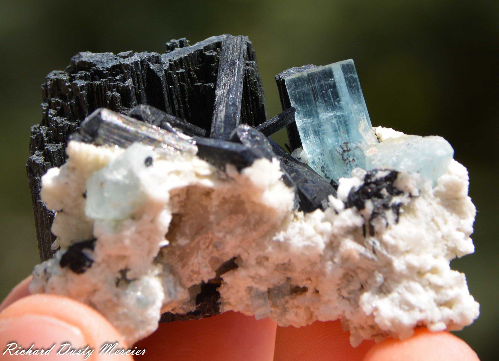 Aigue Marine (Aquamarin) with Shorl (Tourmaline noir) from Namibia