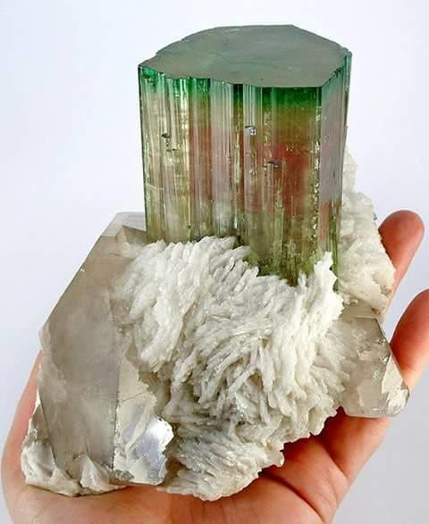 "Tourmaline ""Watermelon"" on Quartz from Afghanistan (private collection)"