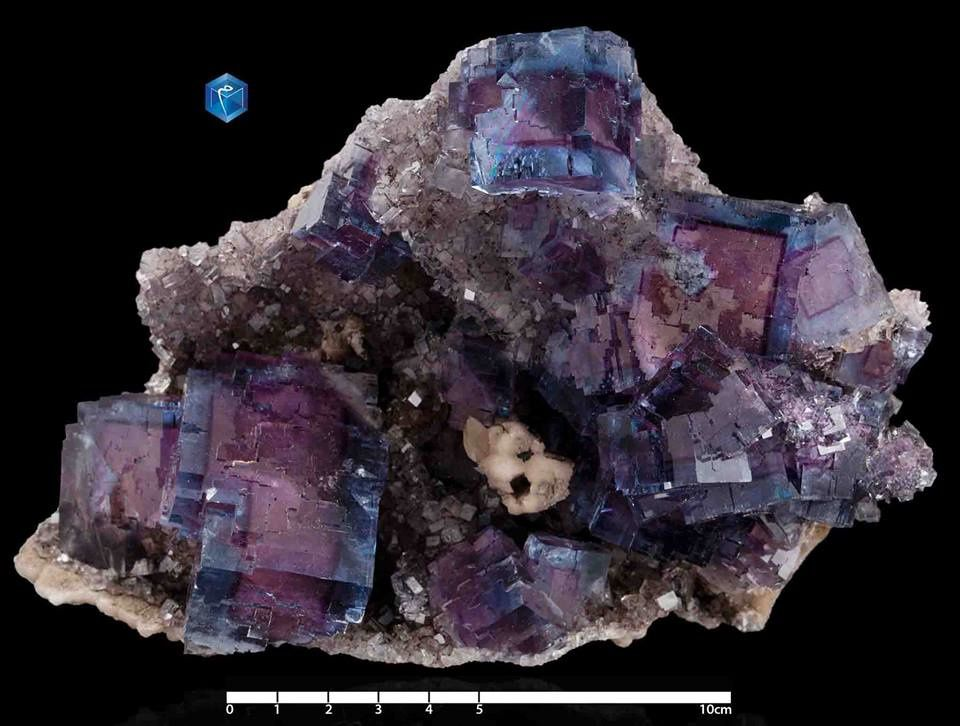 Fluorite (Fluorine) from Cave in Rock, Illinois, USA (specimen and photo by Mim muséum)