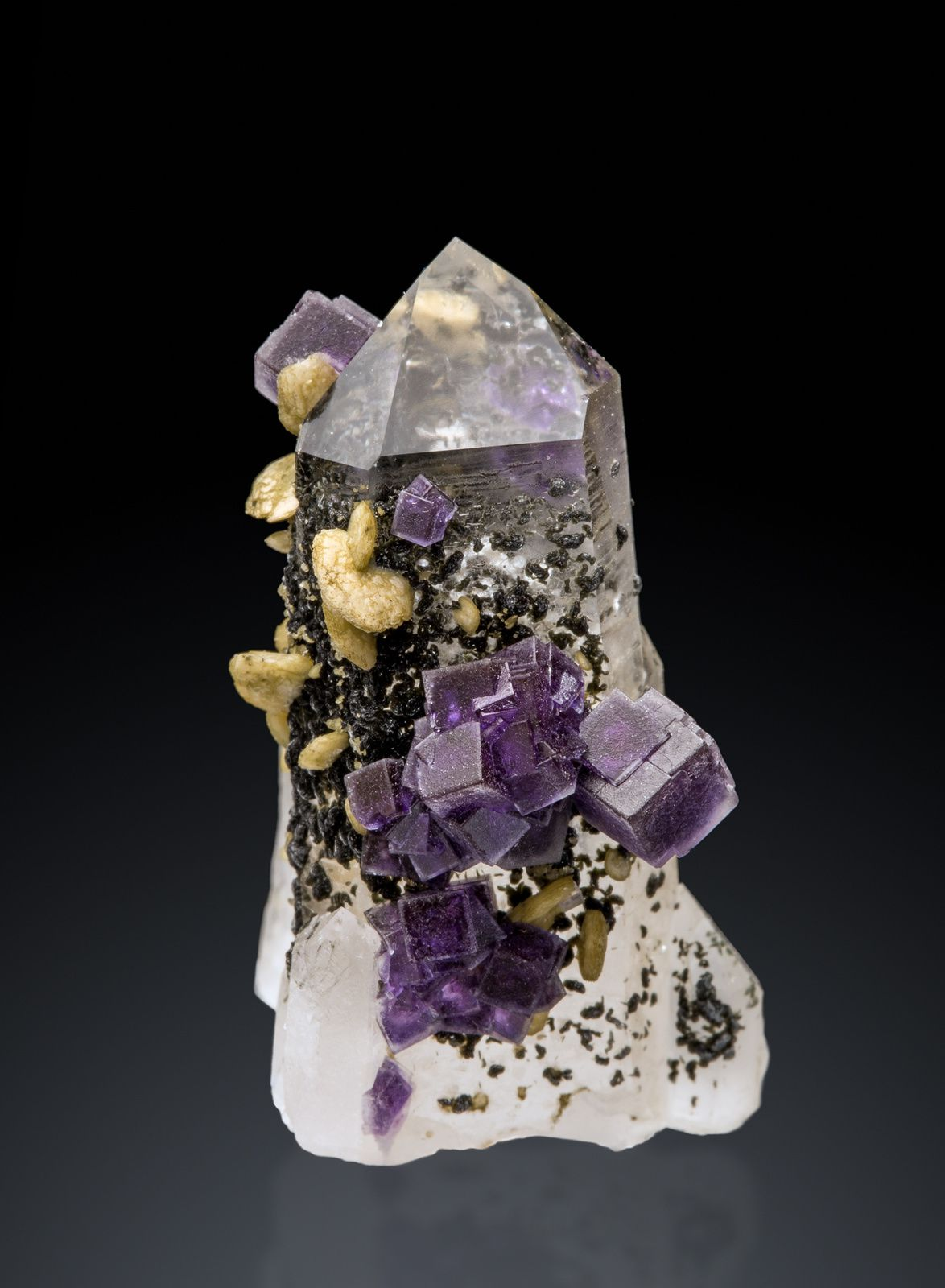 Fluorite Quartz Siderite from Panasqueira, Castelo Branco, Portugal (specimen and photo by Thomas Spann)