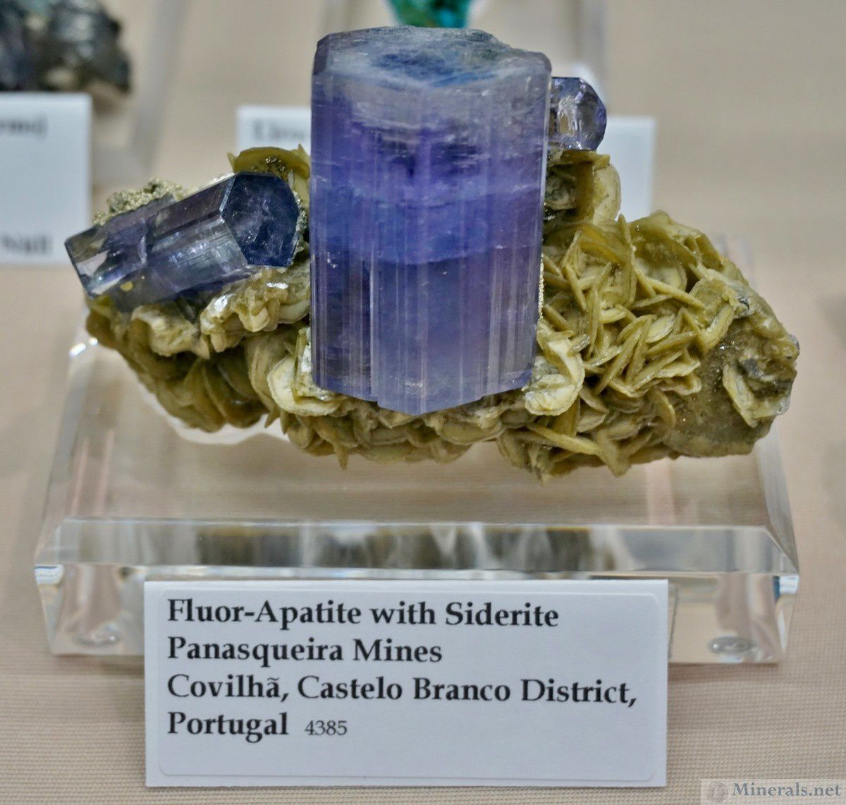"Apatite on Siderite from Panasqueira, Portugal (photo by ""Minerals.net"")"