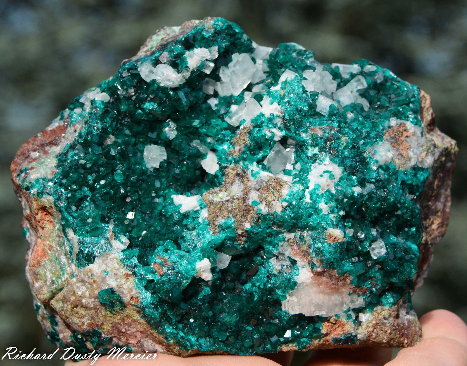 Dioptase with Calcite from Tsumeb Mine, Tsumeb, Namibia (size: Cabinet)