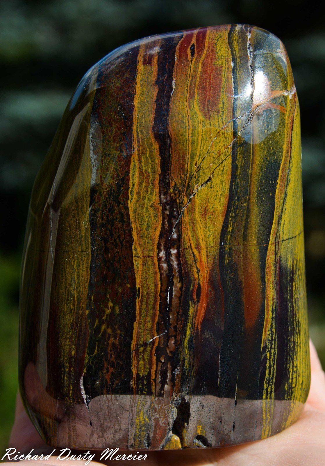 Tiger Eye / Bull Eye / Iron Eye (Oeil de Tigre / Oeil de Taureau / Oeil de Fer) from Madagascar (size: Cabinet)