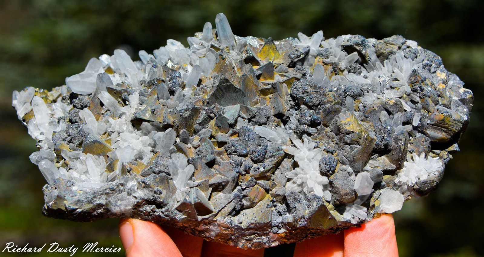Tétraédrite with Blende, Galéne and Quartz from Casapalca Mine, Huarochiri Province, Lima Department, Peru (Perou) (size: Cabinet)