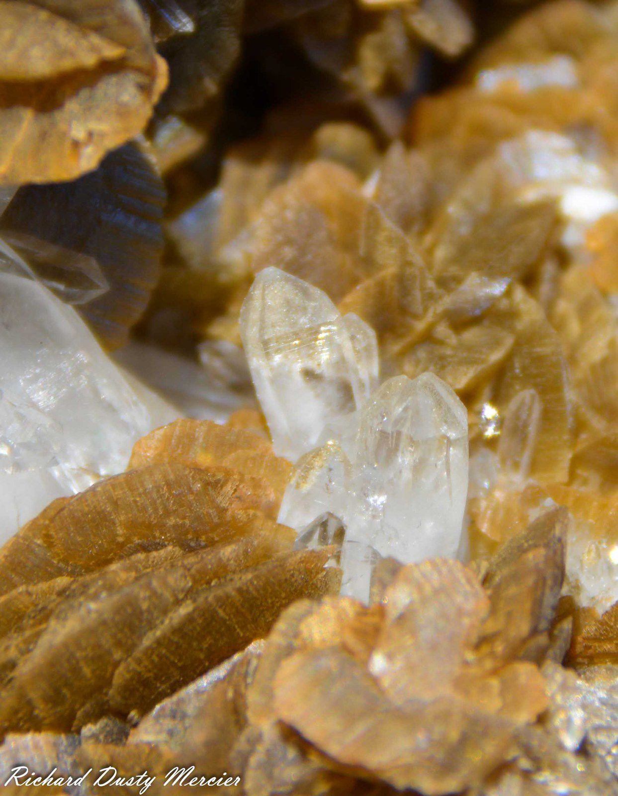 Siderite with Quartz from La Mure, Isère, France (size: Cabinet)