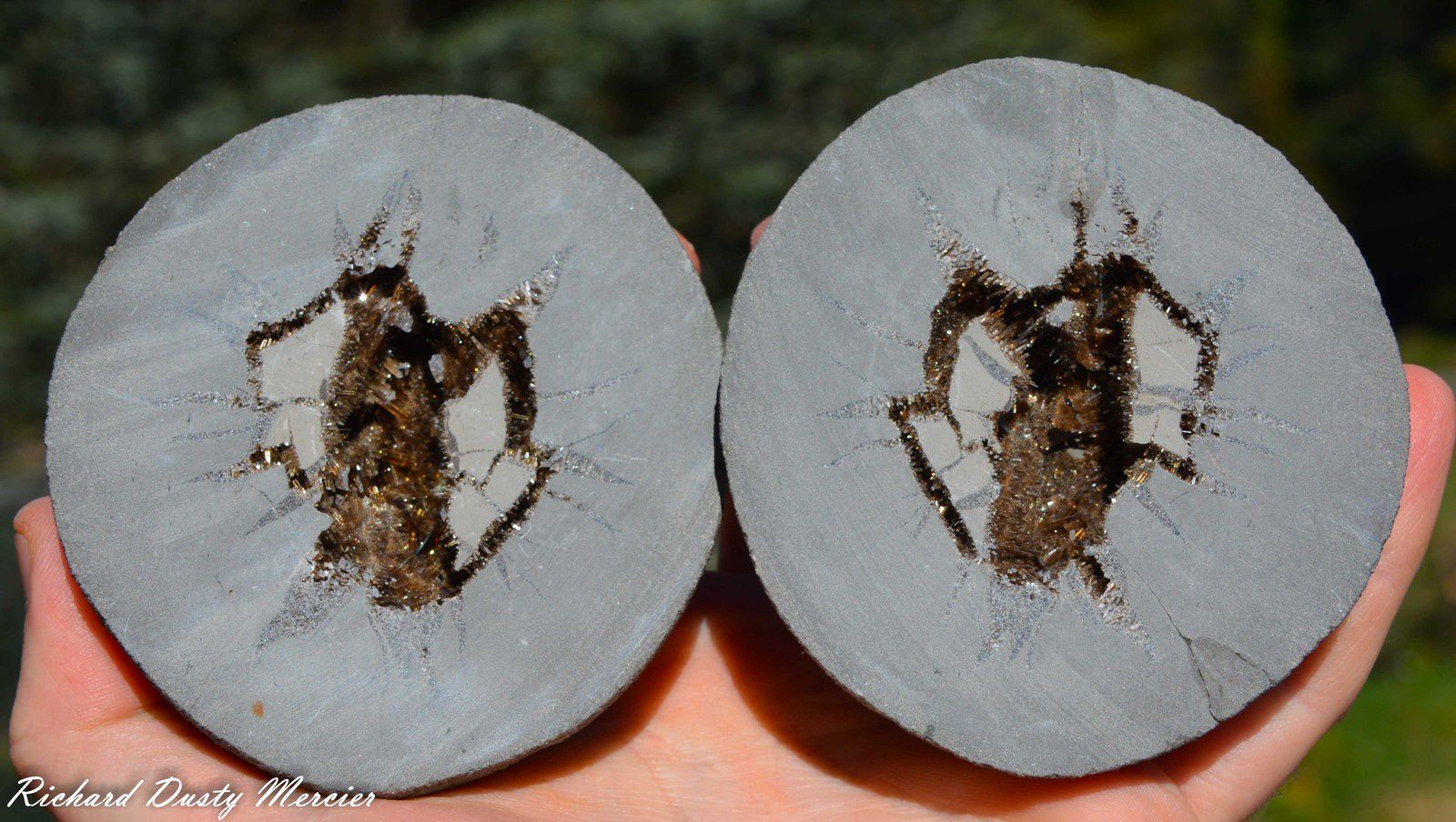 Septarian of Baryte from Guniane, Drome, France (size: Small cabinet)