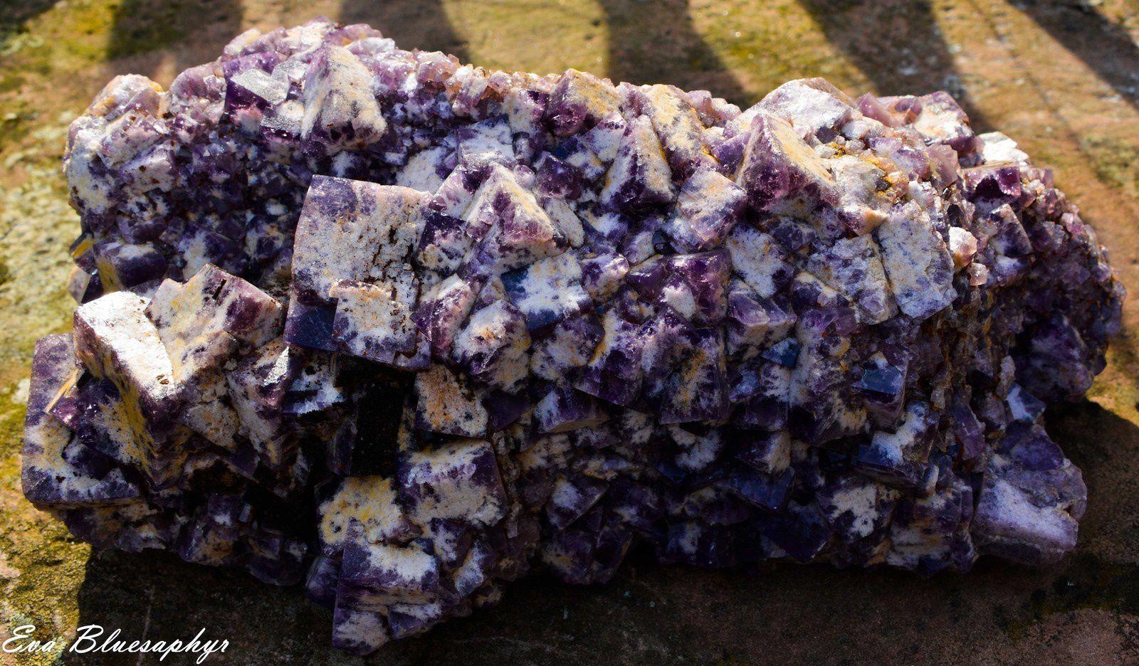 Fluorite (Fluorine) from Weardale, UK (GB) (size: Museum)