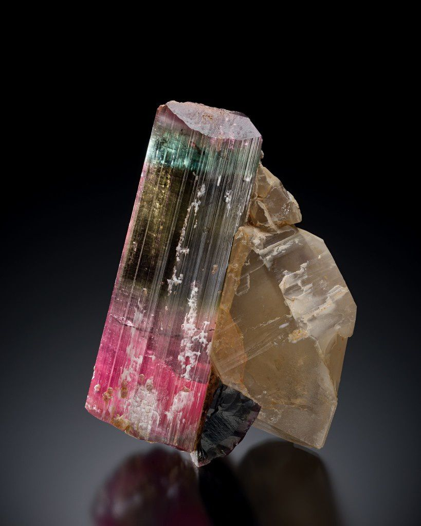 Tourmaline on Quartz (specimen and photo: Michael J Bainbridge)
