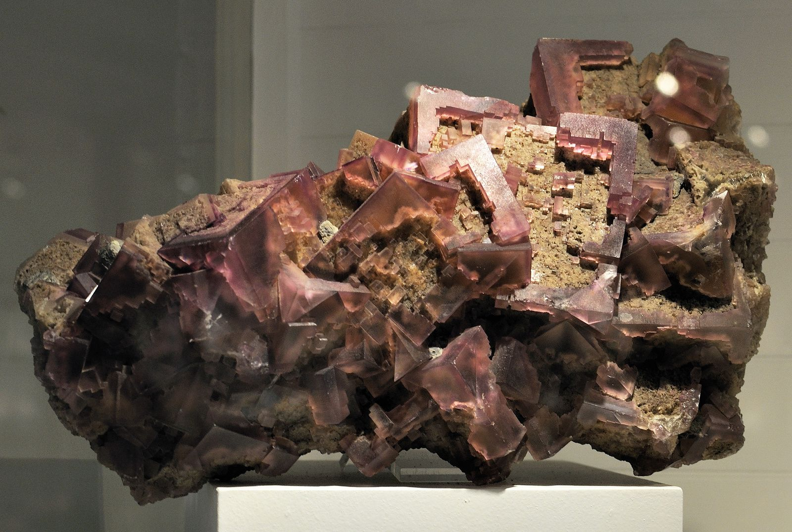 Fluorite from near Rosiclare, Hardin Co., Illinois, USA (Specimen and Photo by Harvard Museum of Natural History)