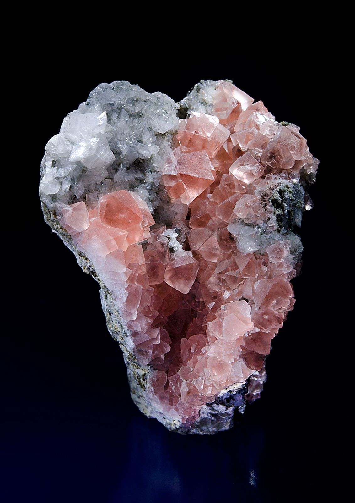 Pink Fluorite from Mont Blanc, Alpes, Suisse (Specimen and Photo: Saphira Minerals)