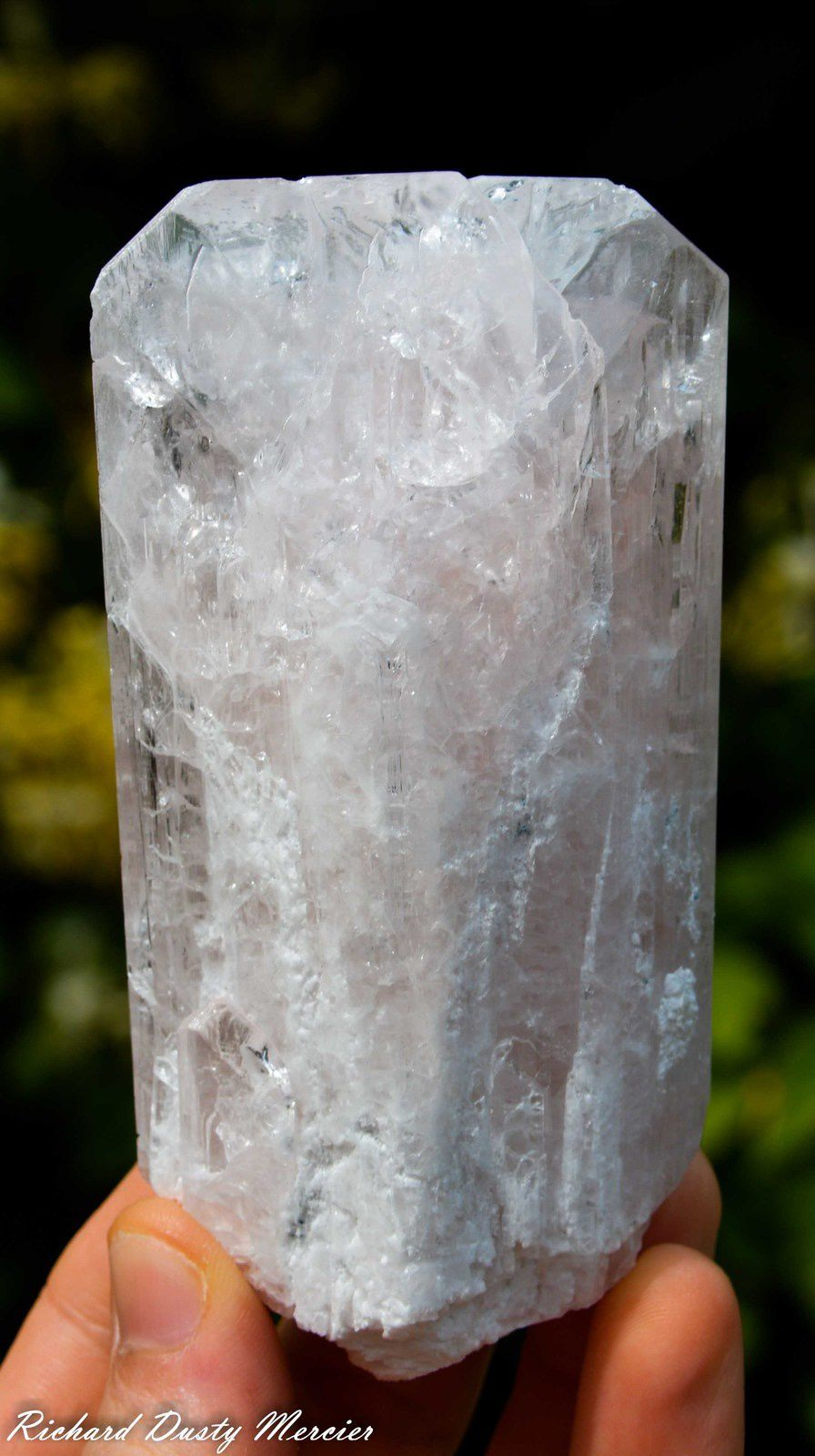 Danburite from  San Sebastian Mine, San Luis Potosi, Mexico