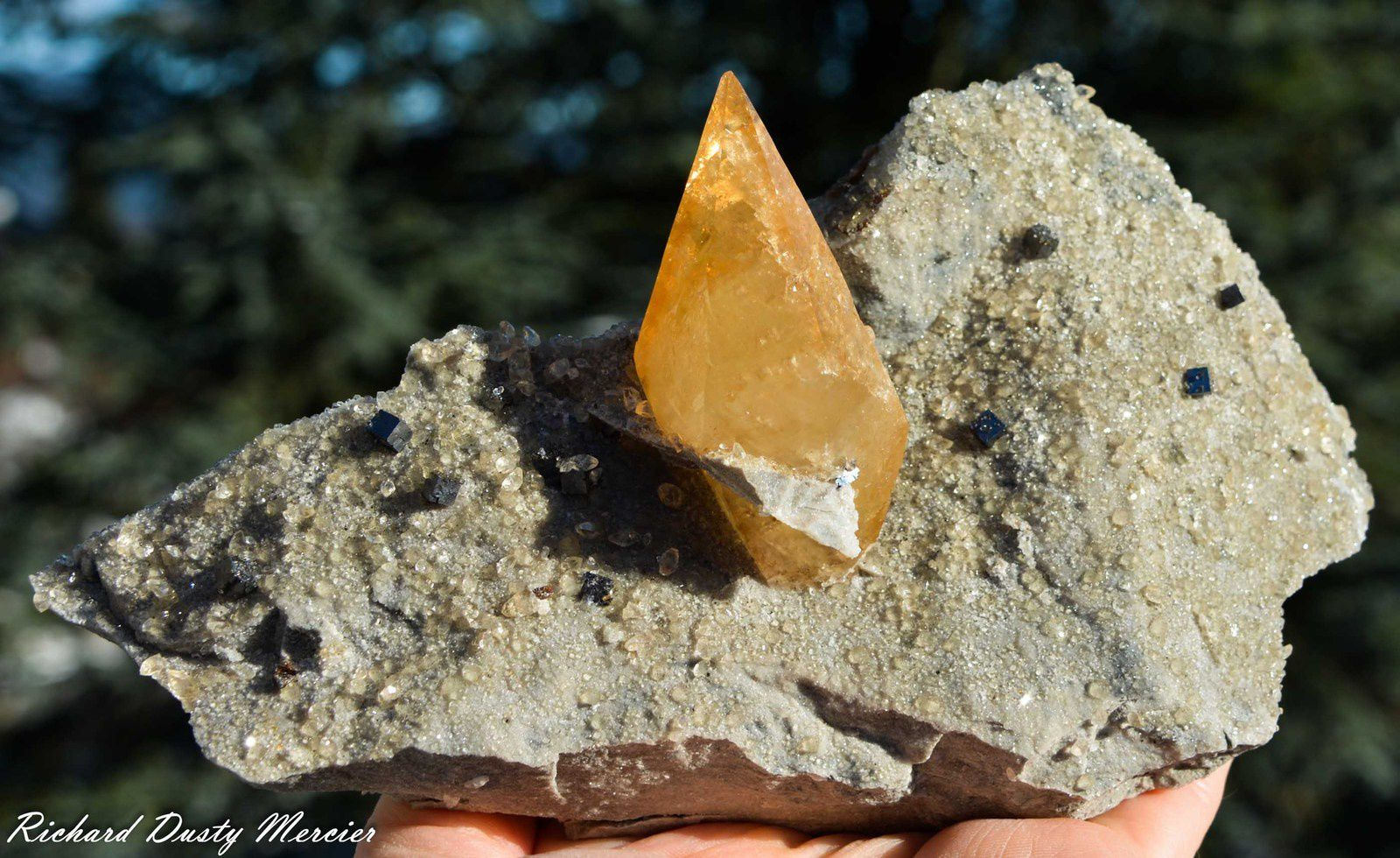 Calcite with Sphalerite from Elmwood Mine, USA