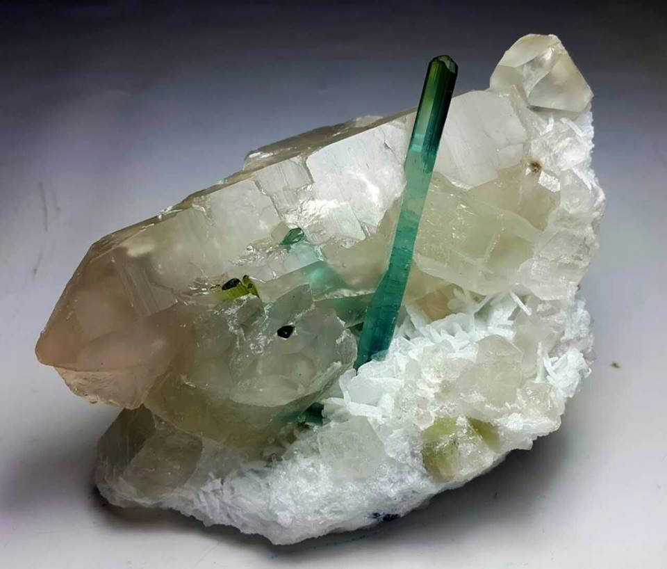 Indigolite Tourmaline on Quartz (specimen and photo by Junaid Khan)