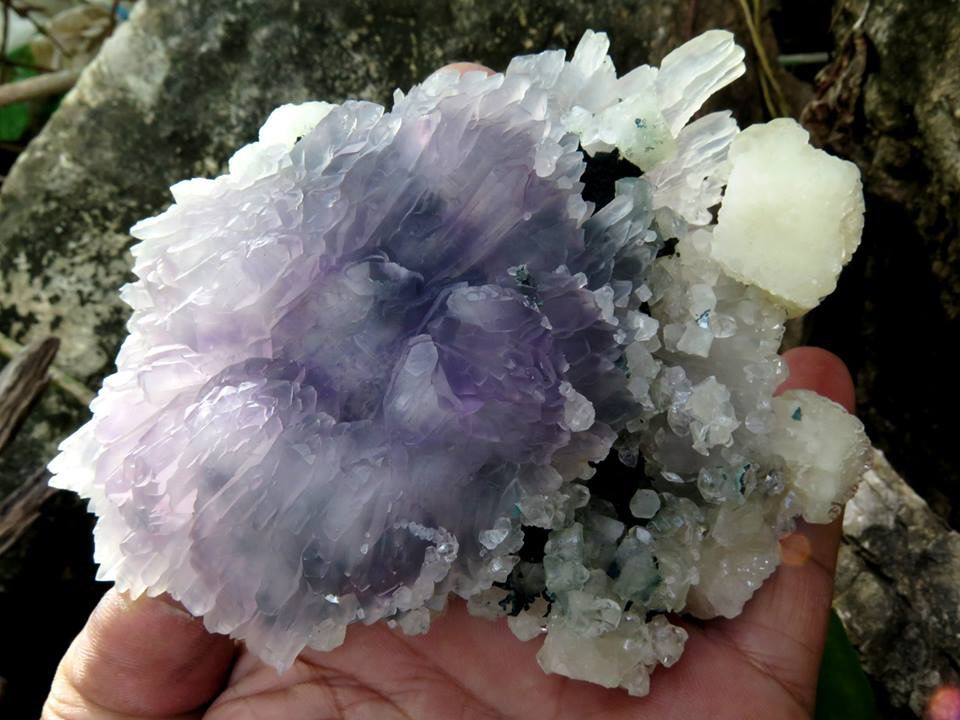 Amethyst Flower from Irai, Rio Grande do Sul, Brazil (private collection)