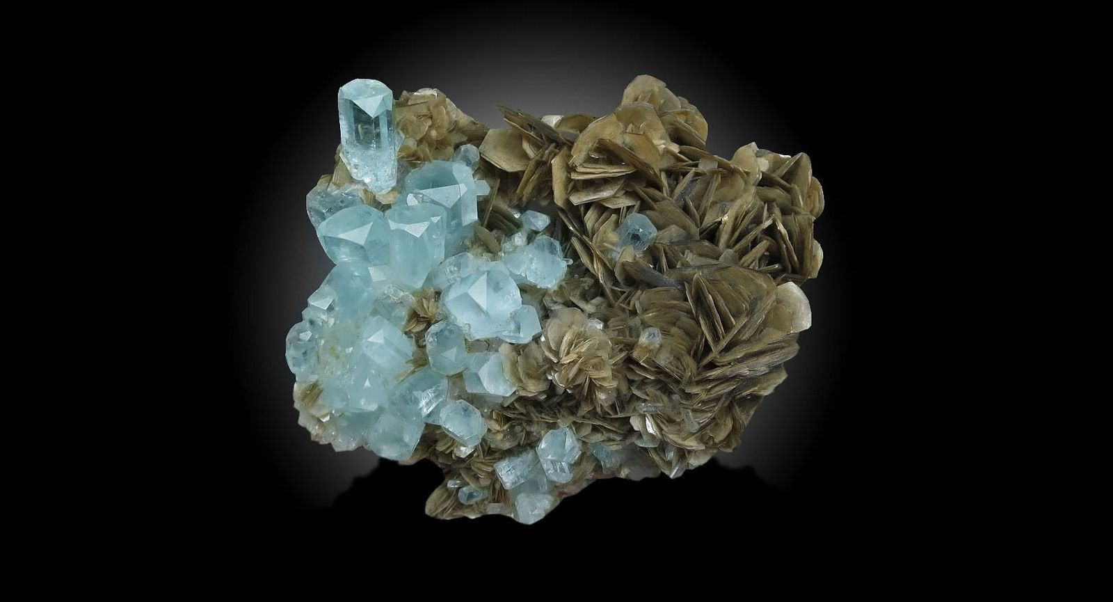 Aquamarine with Muscovite from Pakistan (specien and Photo by Dawood Ali Shah)
