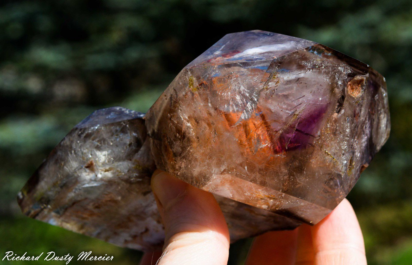 Scepter and Window Quartz (fenêtre et Sceptre) Amethyst and Smoky with Enhydro Water (inclusions d'eau) from Minas Gerais, Brasil