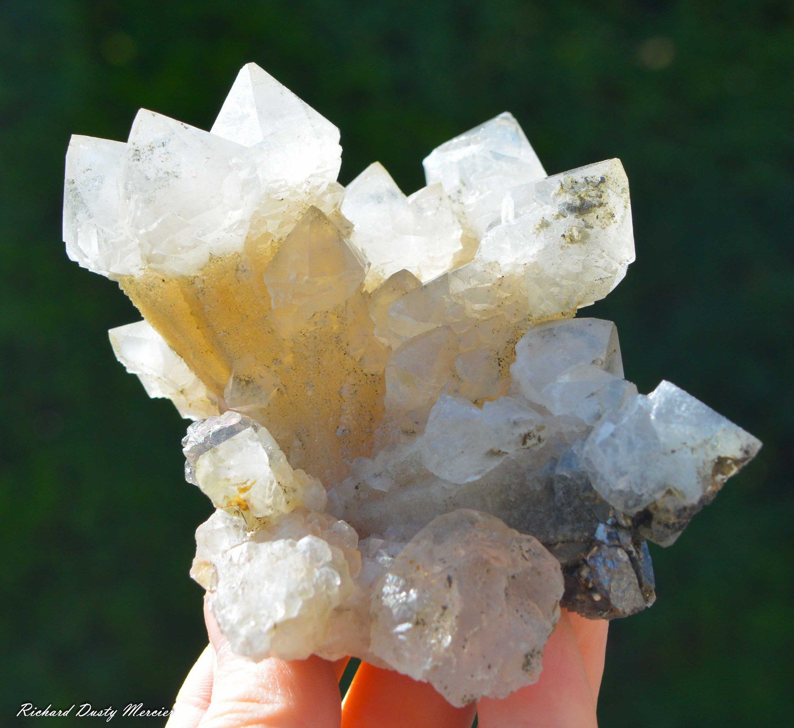 Calcite Quartz Scepter from Mongolia (Specimen and Photo: Richard Dusty Mercier)