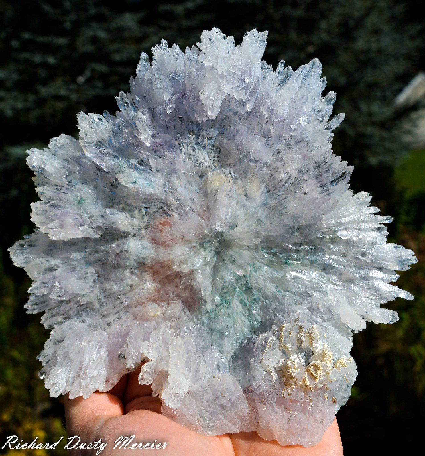 Amethyst Flower fom Irai Mine, Brasil (Specimen and Photo: Richard Dusty Mercier)