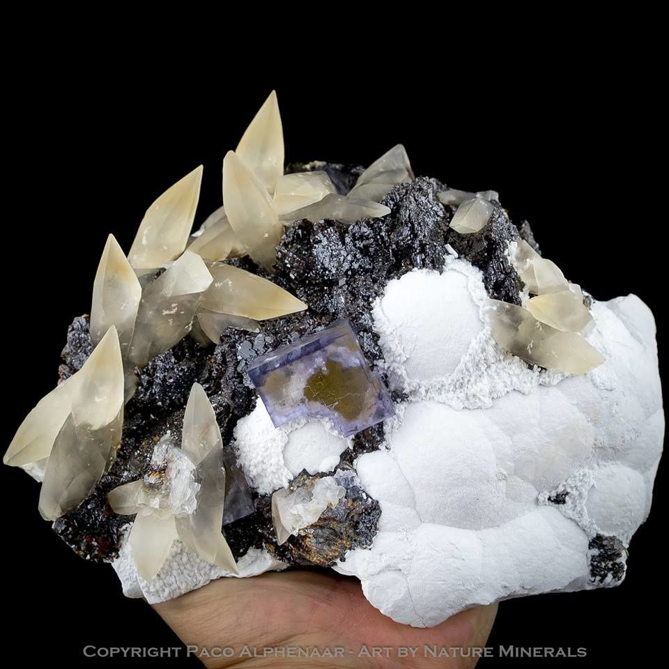 Fluorite from Denton Mine, Cave-in-Rock, Hardin County, Illinois, USA (specimen and photo by Paco Alphenaar - Art by Nature Minerals)