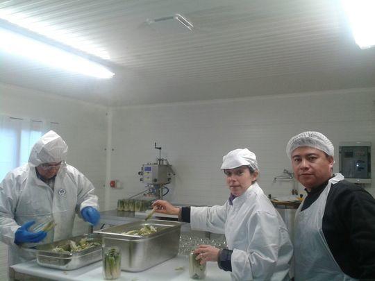 Cuisine et conserverie modulaire des Jardins de Cidamos - 13990 Fontvieille
