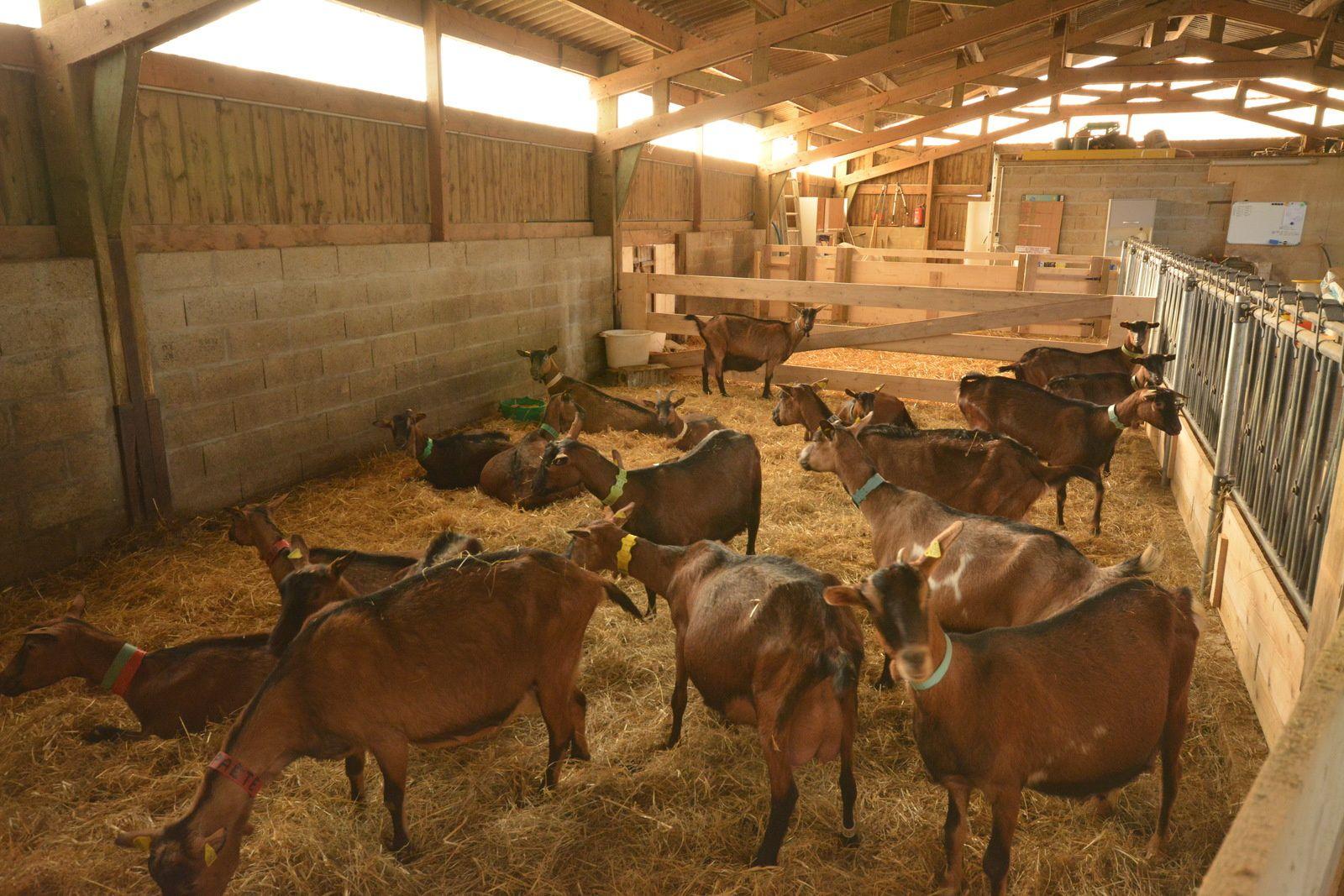 Labo de fromagerie modulaire en kit - Le-Plessier-sur-Bulles 60130
