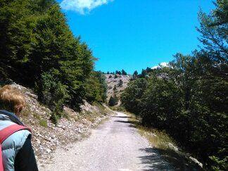 Tour de France 2016 ( Le Mont Ventoux )