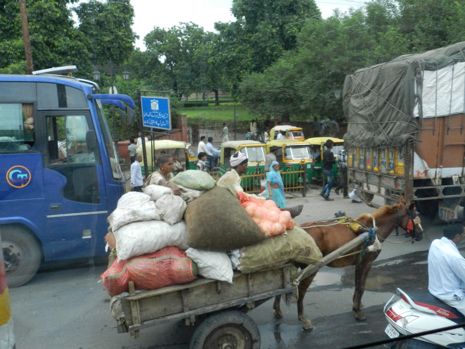 Jour 12 – Agra à Dehli