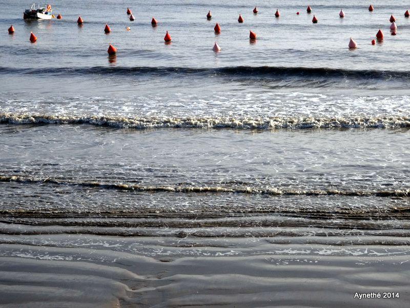 Gilet bébé Demne  et l'Océan sur la côte de Beauté, un jour calme de janvier