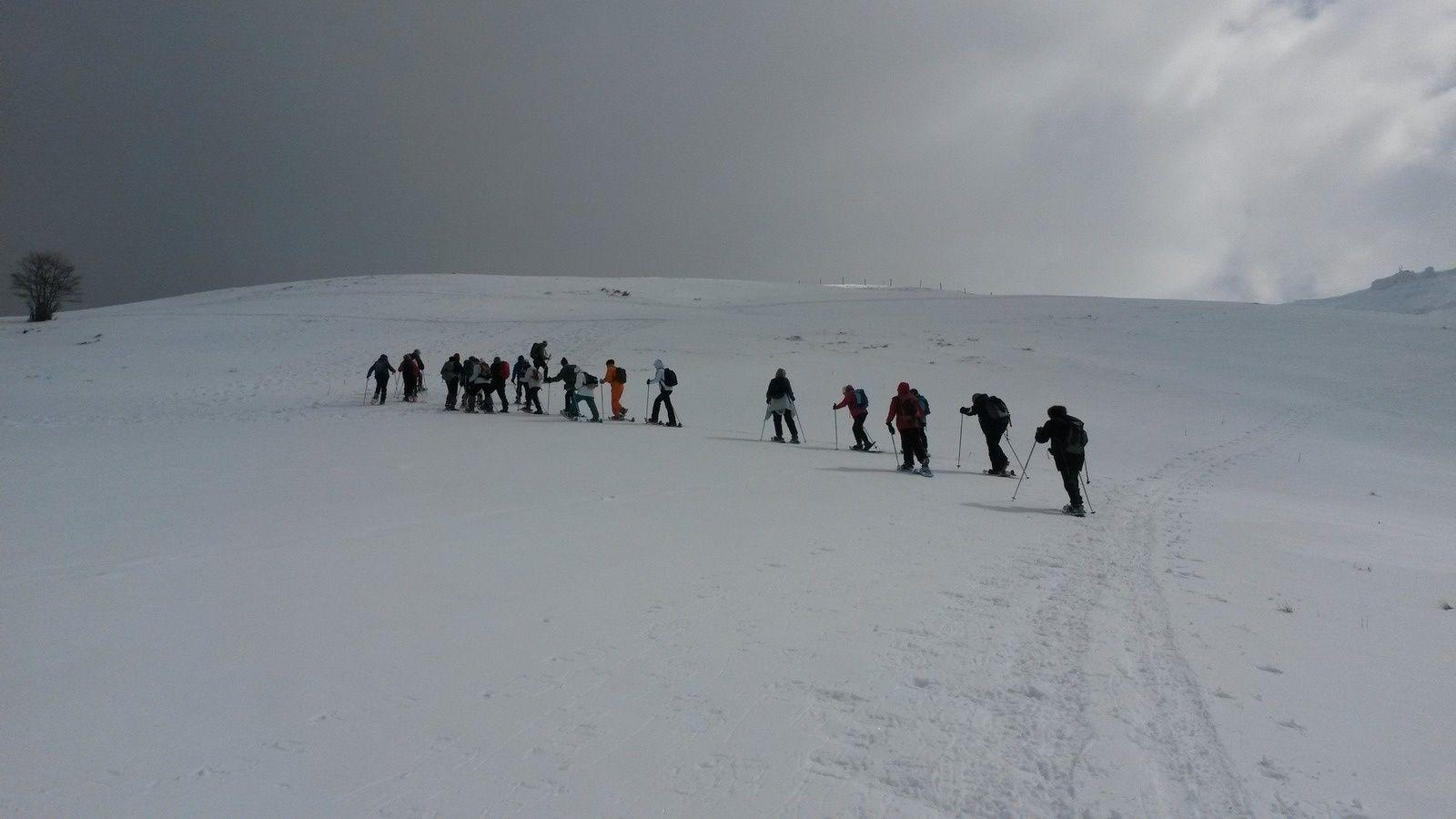 """Les """"Chasseurs Alpins"""" comme nous a surnommé notre guide, montent en """"lacets""""."""