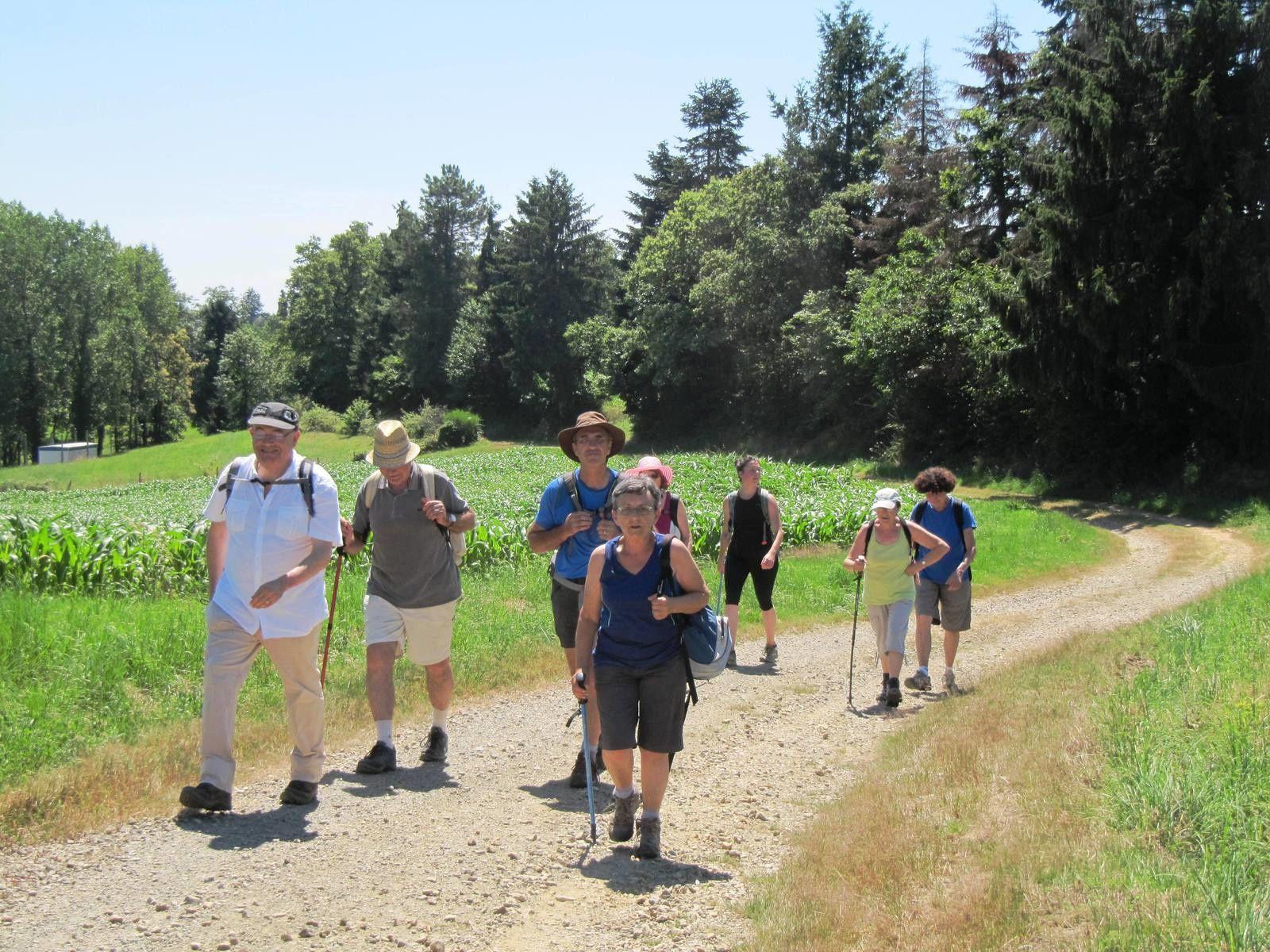 JUILLAC (19) Le Forestier et les Gorges de la Tourmente, le 09/07/2016