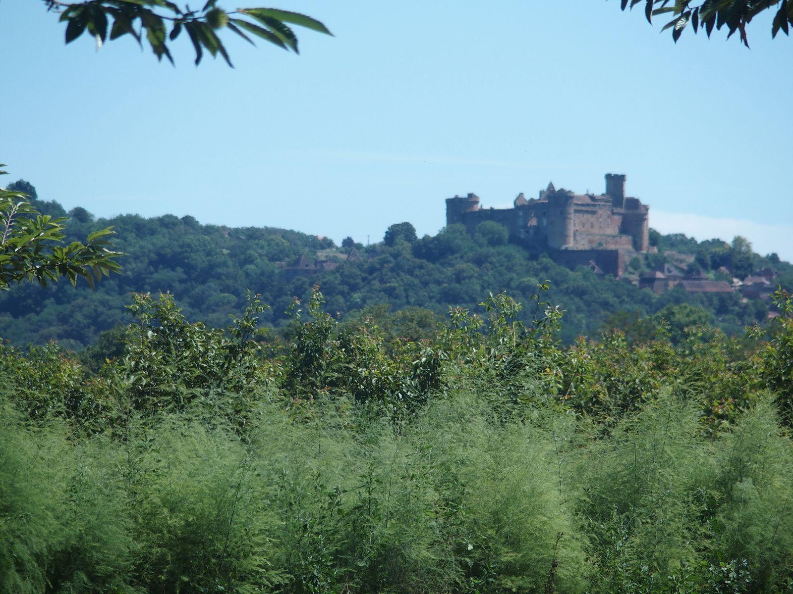 Le château de Castelnau