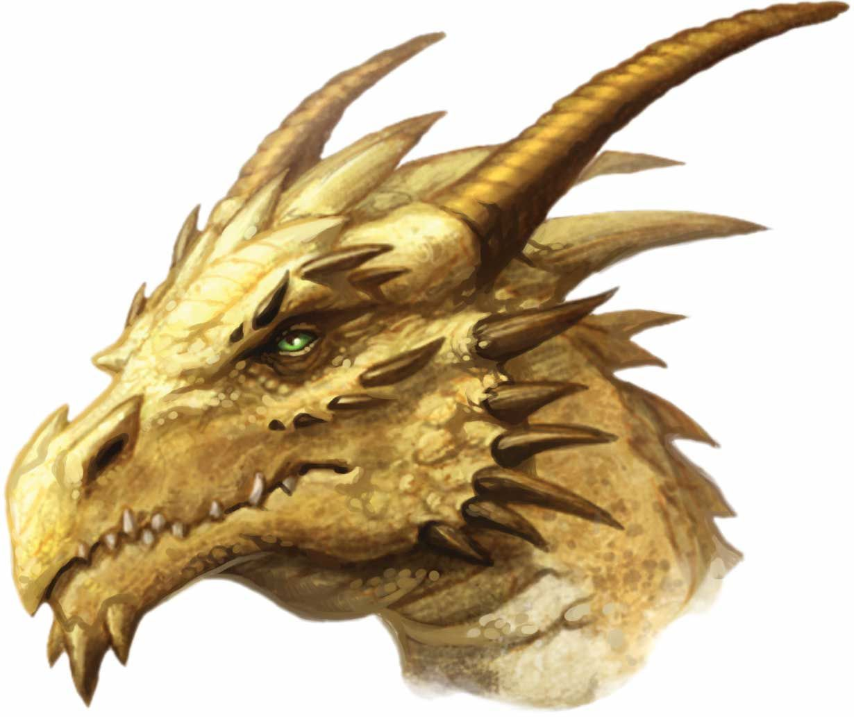 Are Dragons Real? - Dragon City