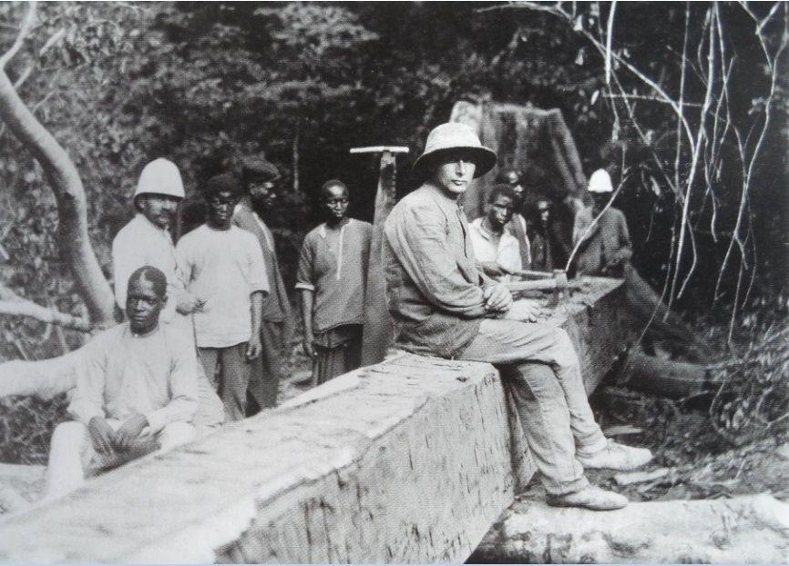 Exploitation forestière au Congo belge au début du XXe siècle.