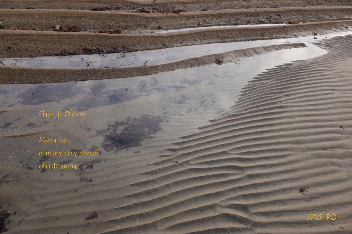 """Haïku original de l'artiste basque espagnole Kristina Peña, de Hondarribia/Fontarabie (http://ikusibatusi.blogspot.fr/) pour cette photographie de Pierre-Olivier Combelles, prise sur une plage de l'île d'Oléron, en France, et en écoutant """"Au gré des ondes"""" de Henri Dutilleux"""