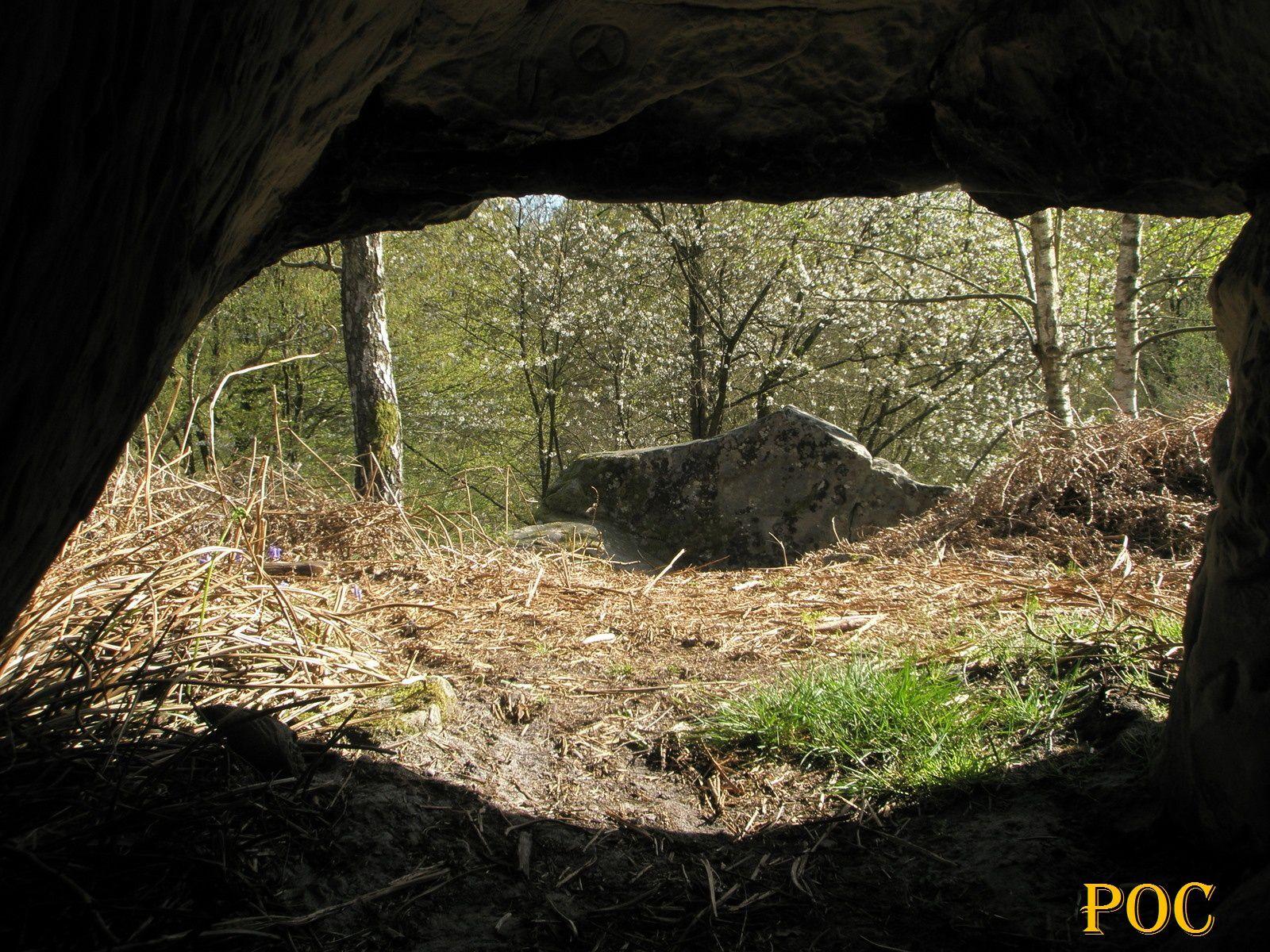 Abri orné mésolithique dans une forêt d'Ile-de-France. Photo: Pierre-Olivier Combelles