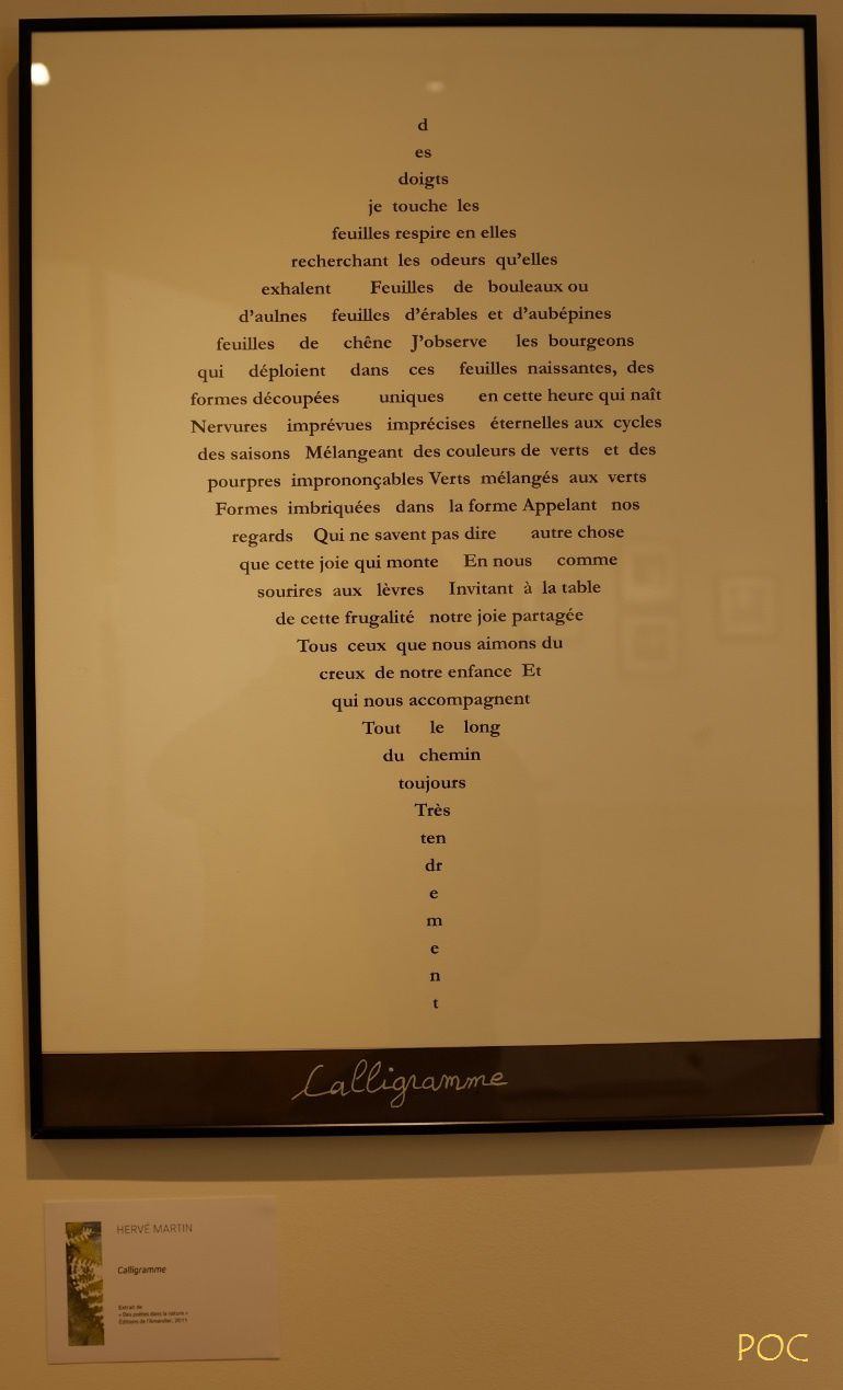 Un calligramme en forme de feuille du poète  Hervé Martin d'Igny. Pour en savoir plus: https://hervemartindigny.jimdo.com/