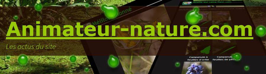 Un site ressource à visiter : animateur-nature.com