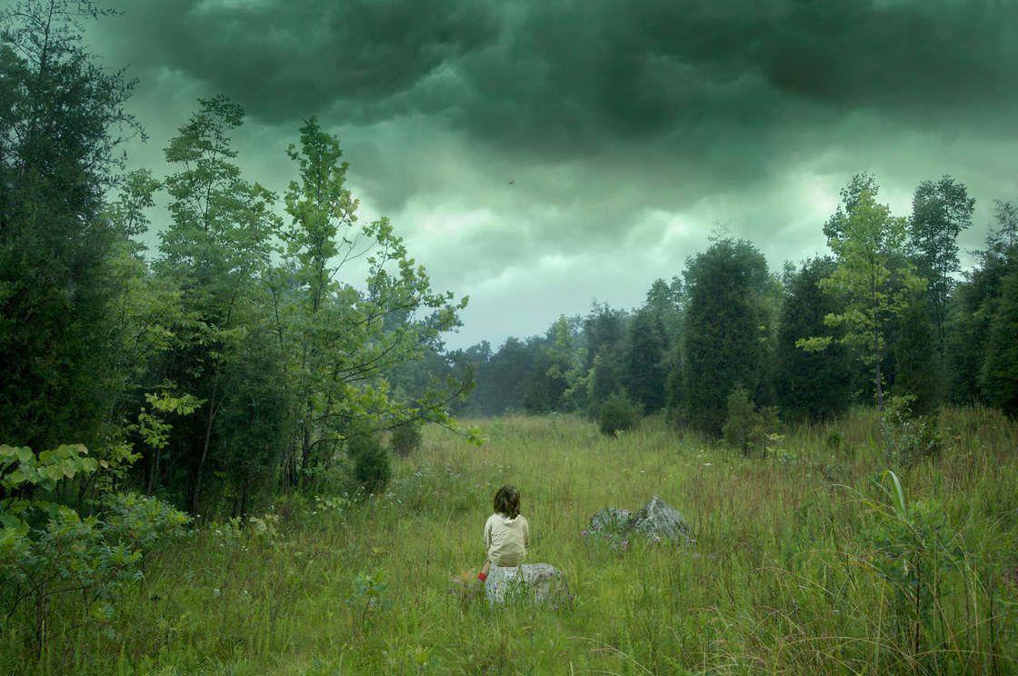 L'image du mercredi : perdus dans la forêt
